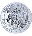 Срібна монета 1oz Слон 100 шилінгів 2013 Сомалі