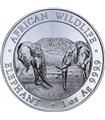 Срібна монета 1oz Слон 100 шилінгів 2020 Сомалі