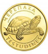 Золота монета 1/25oz Черепаха 2 гривні 2009 Україна